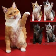 Mr.z Maine Coon Cat 1/6 Resin Figure Animal Simulation Toys Raise Paw 5 Color