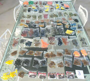 100 Packs Of Worms - Twin Tails And Grubs - Soft Plastics Lot - Fishing Tackle 3