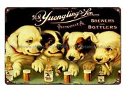 Yuengling Beer Puppy Dog Metal Tin Sign Apartment Decor Stores