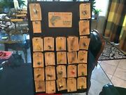 Vintage Lot 29 Gaines Poppers Fishing Lures And Store Display Unopened Cards