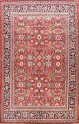 Vintage All-over Traditional Area Rug Living Room Wool Hand-knotted 7x10 Carpet