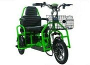Trikaroo Flyer Xl 2 Person Foldable Lithium Green Electric Mobility Scooterandnbsp