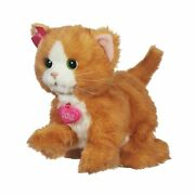 Furreal Friends Daisy Plays-with-me Kitty Toy Standard Packaging
