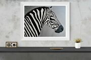 Original Signed Art Zebra African Safari Realism Wildlife Painting Carla Dancey