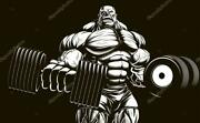 Gain Muscle Mass And Get Ripped Fast Gear