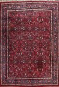 Vegetable Dye Floral Semi-antique Traditional Handmade Area Rug Red Carpet 11x14