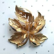 Vintage Signed Sarah Coventry Gold Tone Textured Maple Leaf Brooch C60s/70s