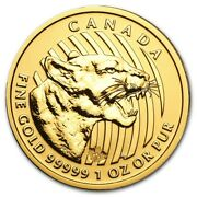 2015 200 Gold Canadian Cougar ✪ 1 Oz 99999 Fine ✪ Coin Only 1 Ozt ◢trusted◣
