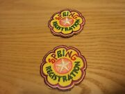 2 Patches Cub Boy Girl Scout Fun Badge Patch Spring Early Registration Flower