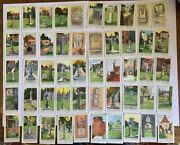 Fryand039s Chocolate- Ancient Sundials-full Set Of 50 Cards.used.good Condition.