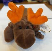 Chocolate The Moose Ty Beanie Baby 1st Edition - 4015 - Rare New Mint 1993