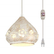 Ylong-zs Hanging Lamps Swag Lights Plug In Pendant Light 16 Ft Cord And Pendant