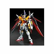 Secondhand Gundam Expo Limited Mg 1/100 Destiny Exclusively For Heine