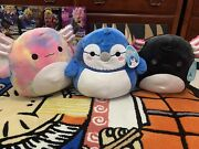 Squishmallows Andldquojaelynandrdquo The Axolotl Andldquotinleyandrdquo The Axolotl And Andldquobabsandrdquo The Blue Jay