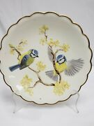 Royal Worcester The Birds Of Dorothy Doughty Plate 1978 Bluetits And Witch Hazel