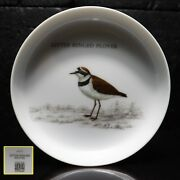Hoya Art China Collection Porcelain Bird Watching Little Ringed Plover Show Plat