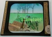 Colored Glass Magic Lantern Slide Atd Animation Peter Rabbit 1904 Tool Shed