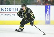 Connor Mcmichael London Knights Game Worn Jersey Washington Capitals