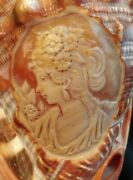 Cameo Carved Into Conch Shell Beautiful Workmanship Art Nuevo Style French Italy