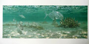 Stanley Meltzoff Bonefish Below On The Flats Signed Art Proof 1/40 Lithograph