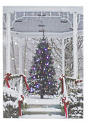 See Enclosed Video Of Light Show In Tree In Gazebo Led Canvas Print