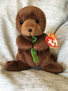 Retired Ty Beanie Baby Seaweed The Otter Rare Mint Pvc Multiple Tag Errors