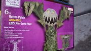 Home Depot Man Eating Plant New In Box Hard To Find 1006 149 153 Sold Out
