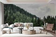 3d Pine Forest Foggy Wallpaper Wall Mural Removable Self-adhesive Sticker1923