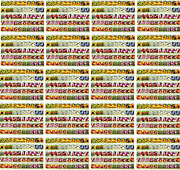 Set Of 1000 Assorted Valley Green Flower Seed Packets Flower Seeds In Bulk -
