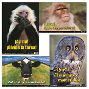 Poster Pals 3 St Spanish Fun Photo Posters Bb5bn