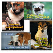 Poster Pals 3 St Spanish Fun Photo Posters Bb10bn