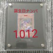 Black Magician Girl Stainless Steel Plate
