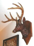 Antique Late 1800s Carved Walnut Deer Head. Top Quality