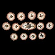 Limoges O Gutherz Set Of 12 Plates Serving Platter 1800andrsquos Antique Bird Pheasant