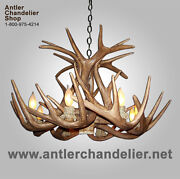 Reproduction Antler Whitetail Deer Chandelier, Rustic Lamps, Crs-1