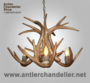 Reproduction Antler Whitetail Deer Chandelier, 4 Lights, Rustic Lamps, Crs-17