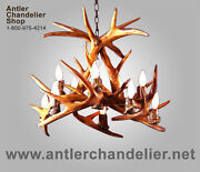 Reproduction Antler 10 Light Whitetail Deer Chandelier, Rustic Lamps, Crs-3