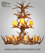Reproduction Antler Xxl Whitetail Cascade Chandelier 12 Lights Lamps Crl-26