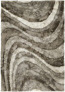 5x8and039 Chandra Rug Flemish Hand-woven Contemporary Shag Polyester Fle51102-576