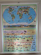 Cool Pull Roll Down School Wall Map Of The World Flora And Fauna Plants Animals