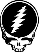 Steal Your Face Jerry Garcia Window Decal - Grateful Dead - Various Sizes