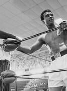 Muhammad Ali In The Ring Art Canvas Boxing Sport Poster Print Boxer Cassius Clay