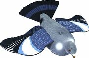 Flock Coated Flocked Full Body Flying Dove Woodpigeon Pigeon Decoy And Foam Wings