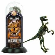 3d Velociraptor Fossil Textured Model Assembly Realistic Skeleton Puzzle Toy