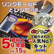 Art Clay Silver Starter Set Of Silver 15g With Ring Mold Recipe From Japan
