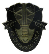 Pack Of 50 Us Army Special Forces Motto De Opresso Liber Hat Cap Lapel Pin