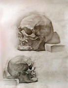 Academic Drawing Anatomy Scull Study Graphite Vintage Russian Realistic School
