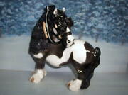 Cheval Draft Pony Dapper Dan In Black And White Pinto And Assorted Colors