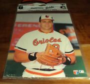 1990 Balt. Orioles Photo Picture Pack Rare Cal And Billy Ripken Showing Must See