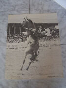 Vintage 1976 Bareback Rodeo Photo By Dusty Allison Print Poster 15 3/4 X 20
